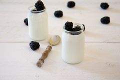 Two white yogurt with blackberries. Two white yogurt with some blackberries on a white wooden table royalty free stock photography