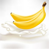 Two whole bananas in cream splash Stock Images