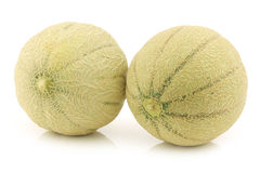 Two whole cantaloupe melons Royalty Free Stock Photos
