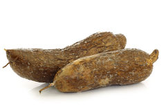 Two whole cassava roots Royalty Free Stock Photo