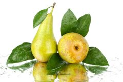 Conference pears with green leaves on white background isolated close up royalty free stock image