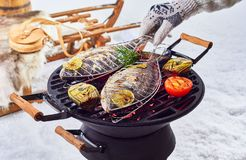 Two whole fish grilling over a winter barbecue stock photos