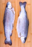 Two whole fresh trout on bamboo cutting board Royalty Free Stock Image