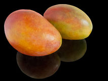Two whole mangoes Royalty Free Stock Image