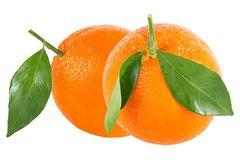 Two Whole Oranges With Leaf Isolated On White Royalty Free Stock Photography