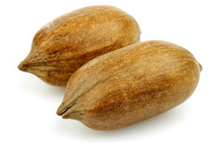 Two whole pecan nuts Royalty Free Stock Photo