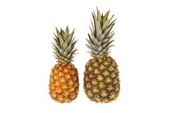 Two whole pineapple fruits Stock Photo