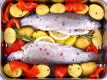 Two whole rainbow trout with red pepper, potato and lemon Royalty Free Stock Photos