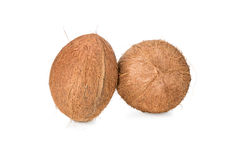 Two whole uncut coconuts Stock Photo