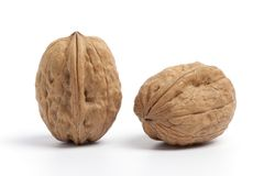 Two whole Walnuts in the shell Stock Images