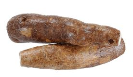 Two whole yuca Royalty Free Stock Photo