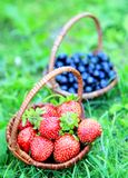 Two wicker baskets of strawberries and blueberries Royalty Free Stock Photos