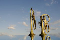 Two wind instrument on mirror Stock Image