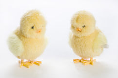 Two wind up chicks Royalty Free Stock Photography
