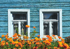Two windows with garden flowers Royalty Free Stock Photo