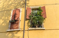 Two windows with open and closed shutters. And green plants on the windowsill Royalty Free Stock Photos
