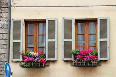 Two windows with pink cyclamen flowers Royalty Free Stock Photos