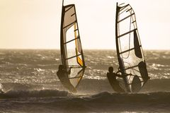 Two Windsurfer sailing Stock Photos
