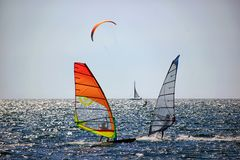 Two windsurfer surfing royalty free stock image