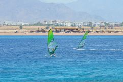 Two windsurfers on a board under a sail move on the sea, against a background of a sandy coast, mountains, royalty free stock photography