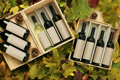 Two wine gift boxes Stock Photos