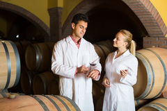 Two wine house workers checking quality of product Stock Photo