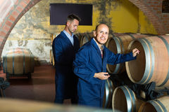 Two wine makers in winery cellar stock photos