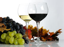 Two wineglasses Royalty Free Stock Image