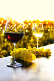 Two wineglasses and grapes Royalty Free Stock Images