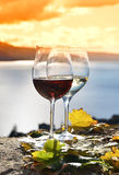 Two wineglasses and grapes Royalty Free Stock Photography