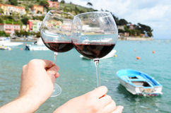 Two wineglasses in the hands Stock Photos