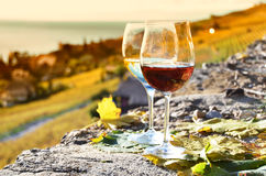 Two wineglasses Stock Image