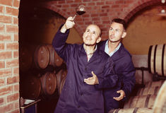 Two winemakers with sample of wine in cellar Stock Photo