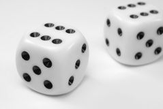 Two winning dice Stock Images