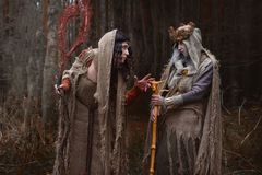 Two witches in rags in forest stock images