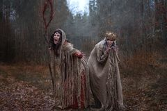 Two witches in rags in forest stock photography