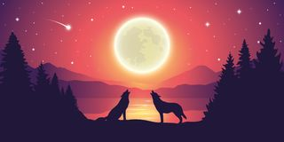 Two wolves by the lake howling to the full moon in starry sky. Vector illustration EPS10