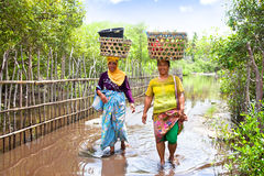 Two woman balancing food basket on the head Royalty Free Stock Images
