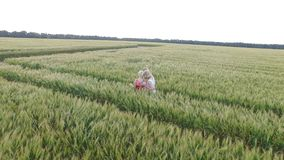 Two woman with blonde hair in a red and blue dress standing in an embrace in the field with wheat. stock video footage