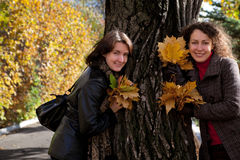 Two woman with bouquets of maple leaves near tree Stock Images