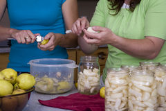 Two woman cutting fruit Royalty Free Stock Photography
