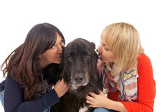 Two Woman and Dog Royalty Free Stock Photography