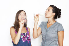 Two woman drinking champagne Stock Image