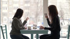 Two woman friends sitting at table and drinking coffee from cup in cafeteria. Smiling woman friends talking and drinking coffee during meeting in cafe stock video footage