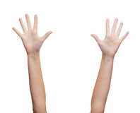 Two woman hands waving hands. Gesture and body parts concept - two woman hands waving hands Royalty Free Stock Photography