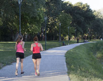 Two woman joggin in a park Royalty Free Stock Photos