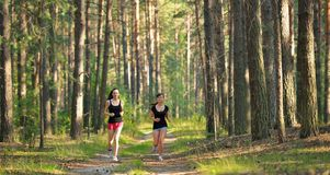 Two woman Jogging in forest Royalty Free Stock Images