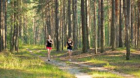 Two woman Jogging in forest Stock Photo