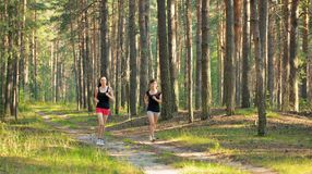 Two woman Jogging in forest Stock Photography