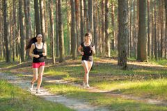 Two woman Jogging in forest Stock Images
